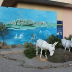 44 - Asinello Bianco - Baraghini