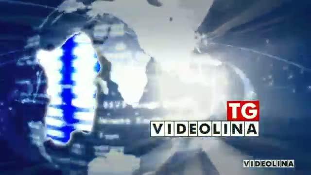 Logo Videolina